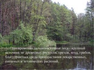 Одновременно дальневосточные леса - крупный источник не древесных ресурсов,