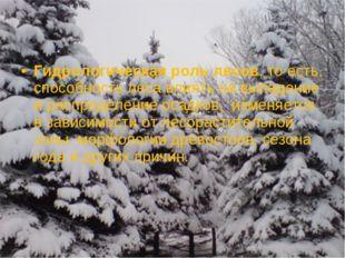 Гидрологическая роль лесов, то есть, способность леса влиять на выпадение и р