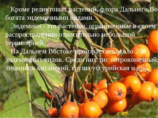 Кроме реликтовых растений, флора Дальнего Востока богата эндемичными видами....