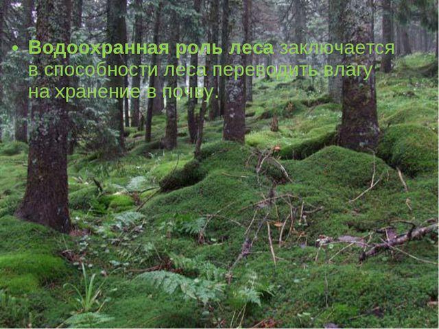 Водоохранная роль леса заключается в способности леса переводить влагу на хра...