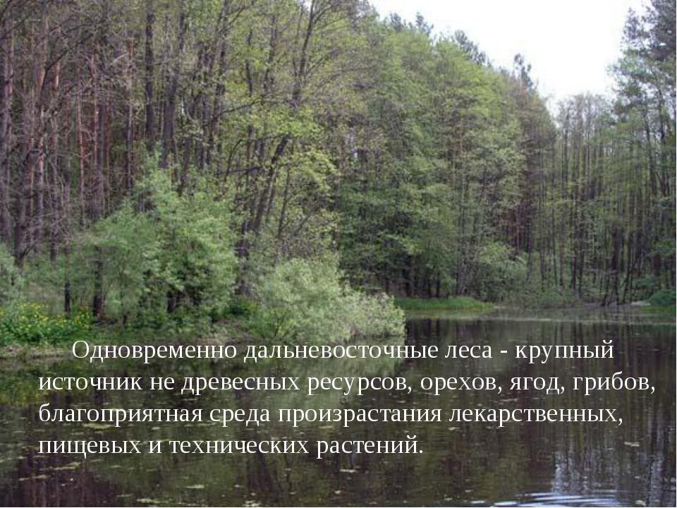 Одновременно дальневосточные леса - крупный источник не древесных ресурсов,...