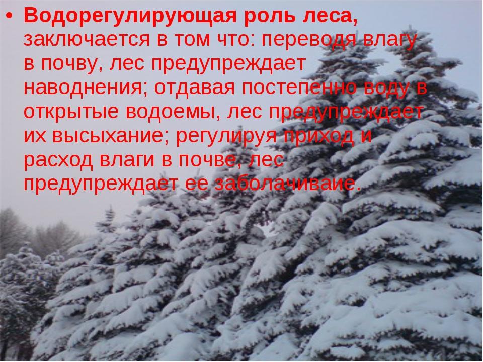 Водорегулирующая роль леса, заключается в том что: переводя влагу в почву, ле...