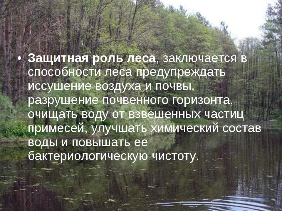 Защитная роль леса, заключается в способности леса предупреждать иссушение во...