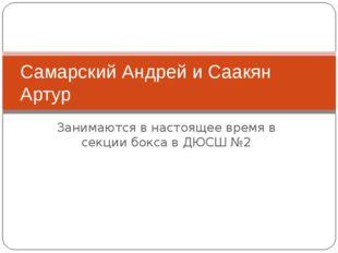 Занимаются в настоящее время в секции бокса в ДЮСШ №2 Самарский Андрей и Саак