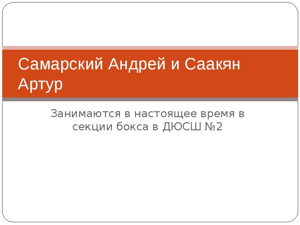 Занимаются в настоящее время в секции бокса в ДЮСШ №2 Самарский Андрей и Саак...