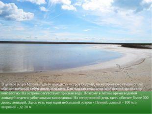 В центре озера Маныч-Гудило находится остров Водный, на котором уже свыше 50