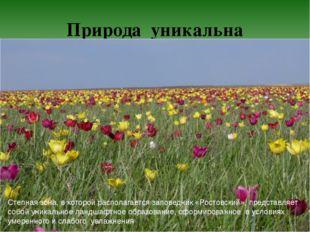 Природа уникальна Степная зона, в которой располагается заповедник «Ростовски