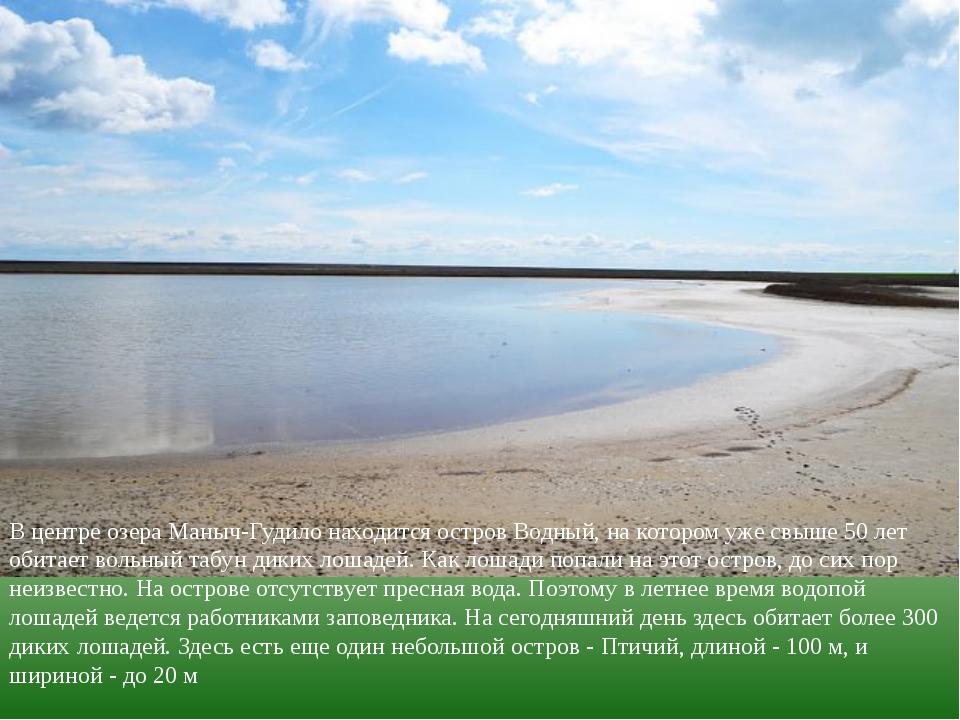 В центре озера Маныч-Гудило находится остров Водный, на котором уже свыше 50...