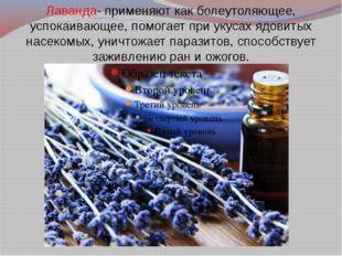 Лаванда- применяют как болеутоляющее, успокаивающее, помогает при укусах ядов