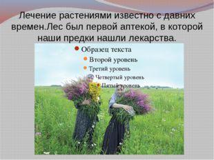 Лечение растениями известно с давних времен.Лес был первой аптекой, в которой