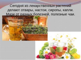 Сегодня из лекарственных растений делают отвары, настои, сиропы, капли. Мази