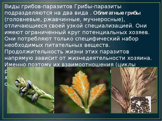 Виды грибов-паразитов Грибы-паразиты подразделяются на два вида . Облигатные...