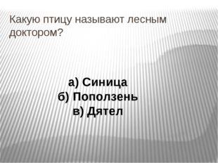 Какую птицу называют лесным доктором? а) Синица б) Поползень в) Дятел