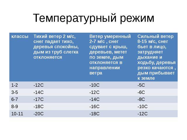 Температурный режим классы Тихий ветер 2 м/с,снег падает тихо, деревья спокой...