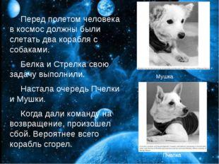 Перед полетом человека в космос должны были слетать два корабля с собаками.