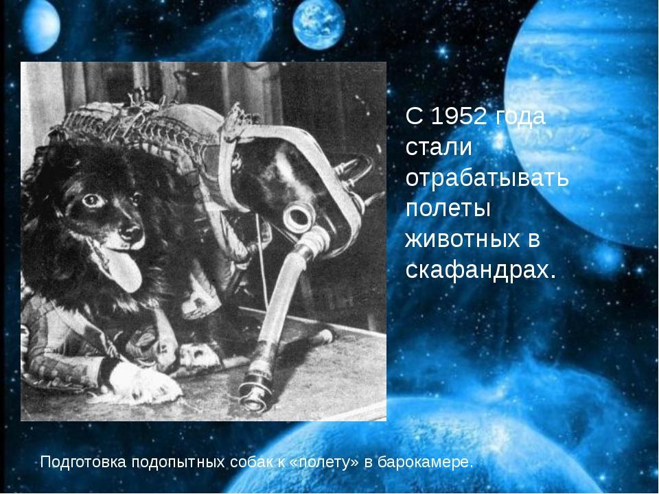С 1952 года стали отрабатывать полеты животных в скафандрах. С 1952 года ста...