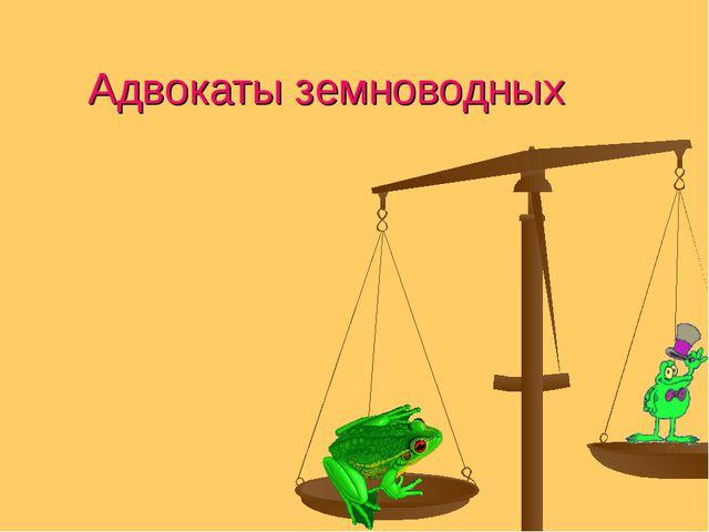 Адвокаты земноводных