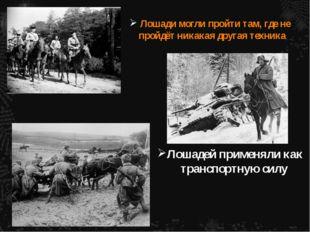 Лошади могли пройти там, где не пройдёт никакая другая техника Лошадей примен