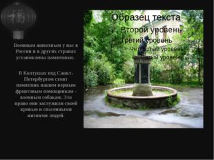Военным животным у нас в России и в других странах установлены памятники. В