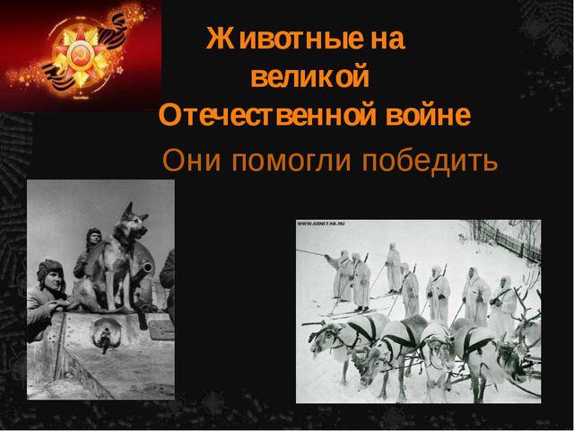 Животные на великой Отечественной войне Они помогли победить