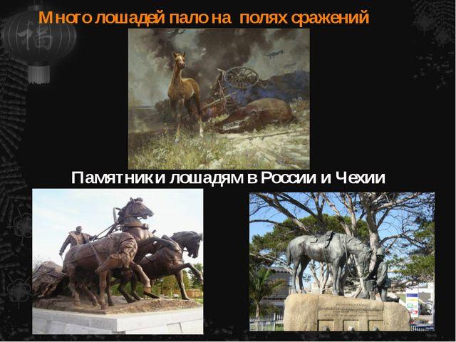 Много лошадей пало на полях сражений Памятники лошадям в России и Чехии