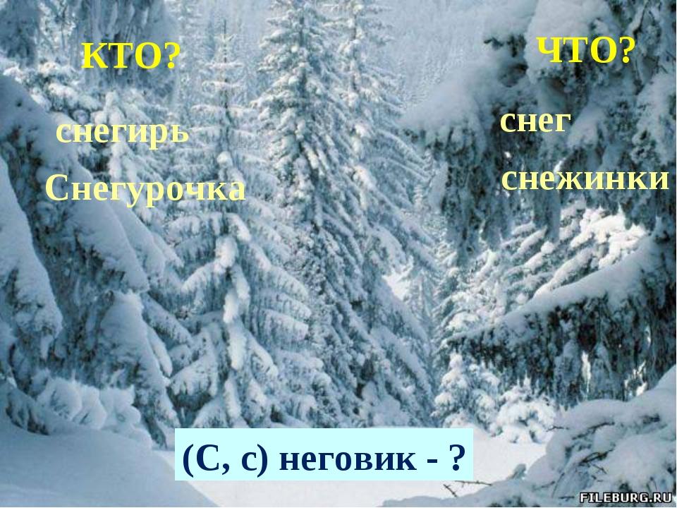 КТО? ЧТО? снегирь Снегурочка снег снежинки (С, с) неговик - ?