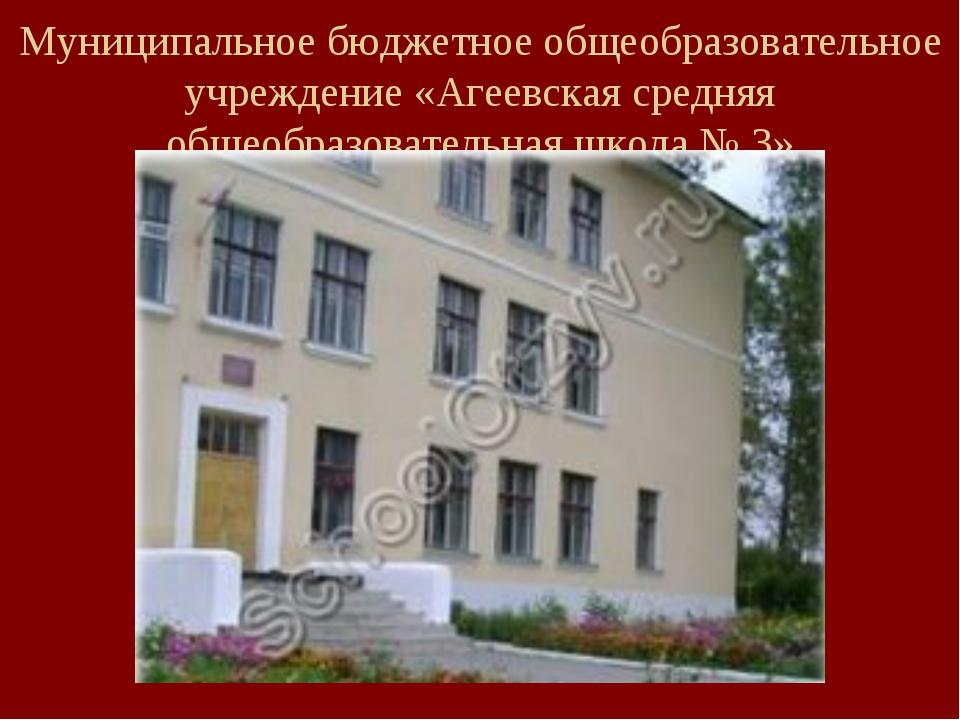 Муниципальное бюджетное общеобразовательное учреждение «Агеевская средняя общ...