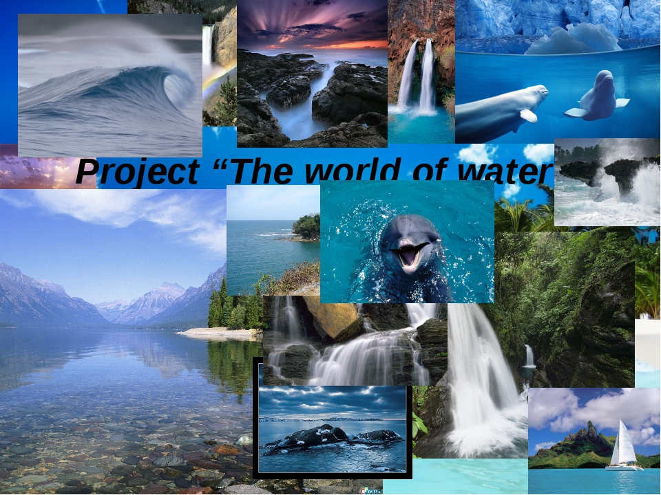 """Project """"The world of water""""."""