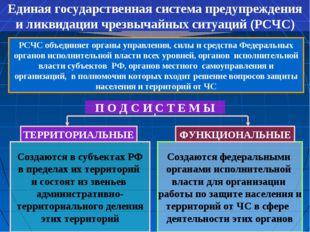 Единая государственная система предупреждения и ликвидации чрезвычайных ситуа