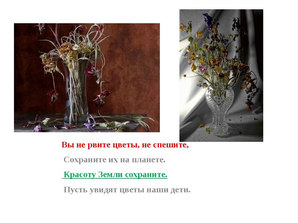 Вы не рвите цветы, не спешите, Сохраните их на планете. Красоту Земли сохрани...
