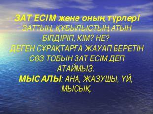 ЗАТ ЕСІМ жене оның түрлері ЗАТТЫҢ, ҚҰБЫЛЫСТЫҢ АТЫН БІЛДІРІП, КІМ? НЕ? ДЕГЕН С