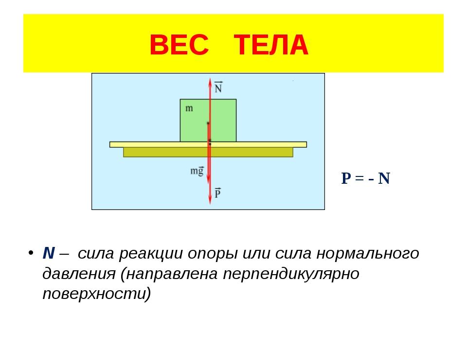 P = - N N – сила реакции опоры или сила нормального давления (направлена пер...