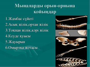Мыналарды орын-орнына қойыңдар 1.Жамбас сүйегі 2.Асық жілік,ортан жілік 3.Тоқ