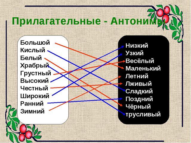 Прилагательные - Антонимы Большой Кислый Белый Храбрый Грустный Высокий Честн...