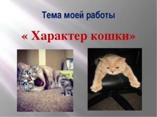 Тема моей работы « Характер кошки»