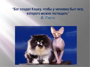 """""""Бог создал Кошку, чтобы у человека был тигр, которого можно погладить"""" В. Г"""