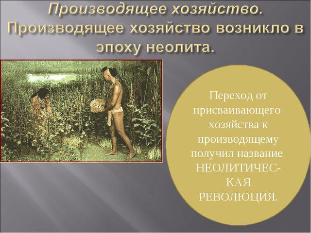 Переход от присваивающего хозяйства к производящему получил название НЕОЛИТИЧ...