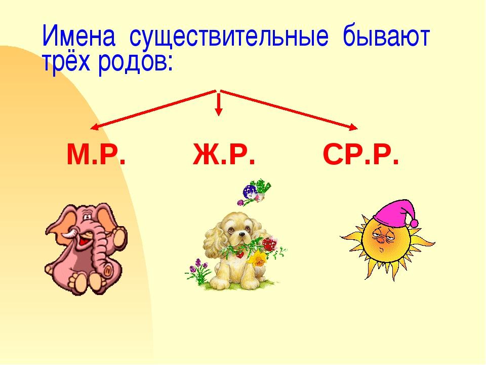 Имена существительные бывают трёх родов: М.Р. Ж.Р. СР.Р.