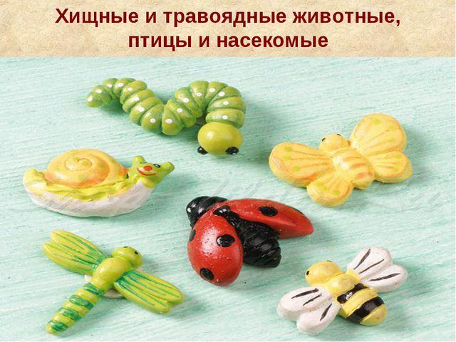Хищные и травоядные животные, птицы и насекомые