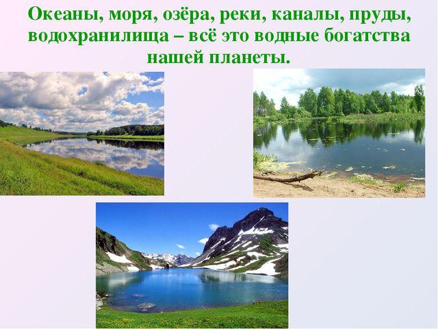 Океаны, моря, озёра, реки, каналы, пруды, водохранилища – всё это водные бога...