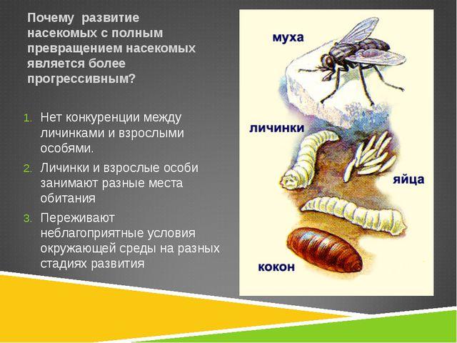 Почему развитие насекомых с полным превращением насекомых является более прог...