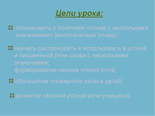 познакомить с понятием «слова с несколькими значениями» (многозначные слова);