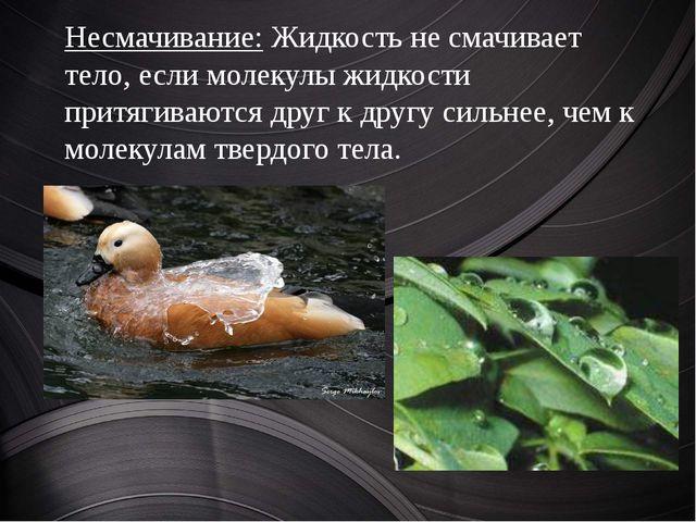 Несмачивание: Жидкость не смачивает тело, если молекулы жидкости притягивают...