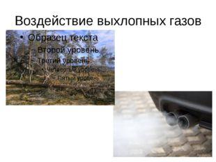 Воздействие выхлопных газов