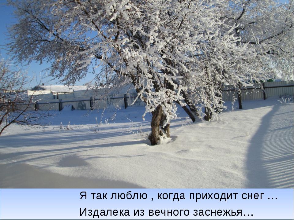 Я так люблю , когда приходит снег … Издалека из вечного заснежья…