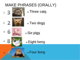 MAKE PHRASES (ORALLY) 1.  Three cats 2. 3. 4. 5.  Two dogs  Six pigs  Eig