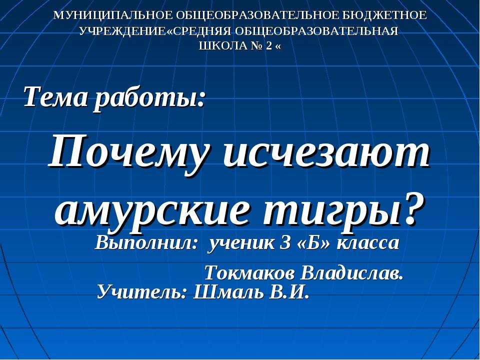 Тема работы: Выполнил: ученик 3 «Б» класса Токмаков Владислав. Почему исчезаю...