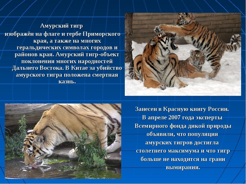 Амурский тигр изображён на флаге и гербе Приморского края, а также на многих...