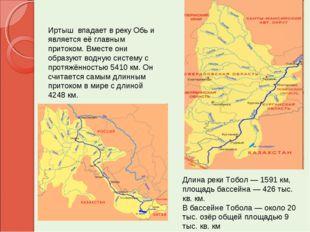 Длина реки Тобол — 1591 км, площадь бассейна — 426 тыс. кв. км. В бассейне То