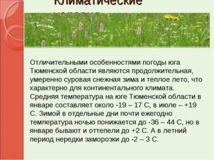 Климатические условия Отличительными особенностями погоды юга Тюменской облас